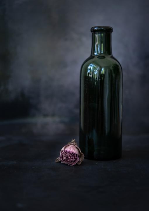Fotoplakat Rose by Katharina Axmann Photography