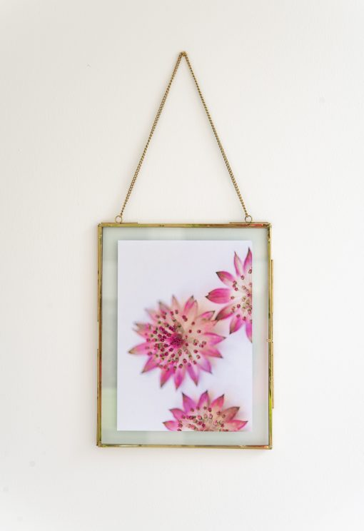 Fotoplakat mit Rahmen Blumenmakro