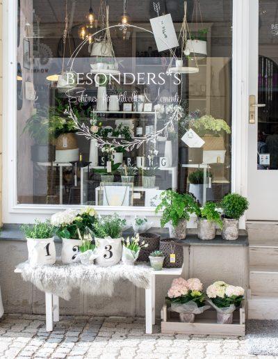 Portrait Geschäft Besonderss in Baden bei Wien Foto von Katharina Axmann Photography